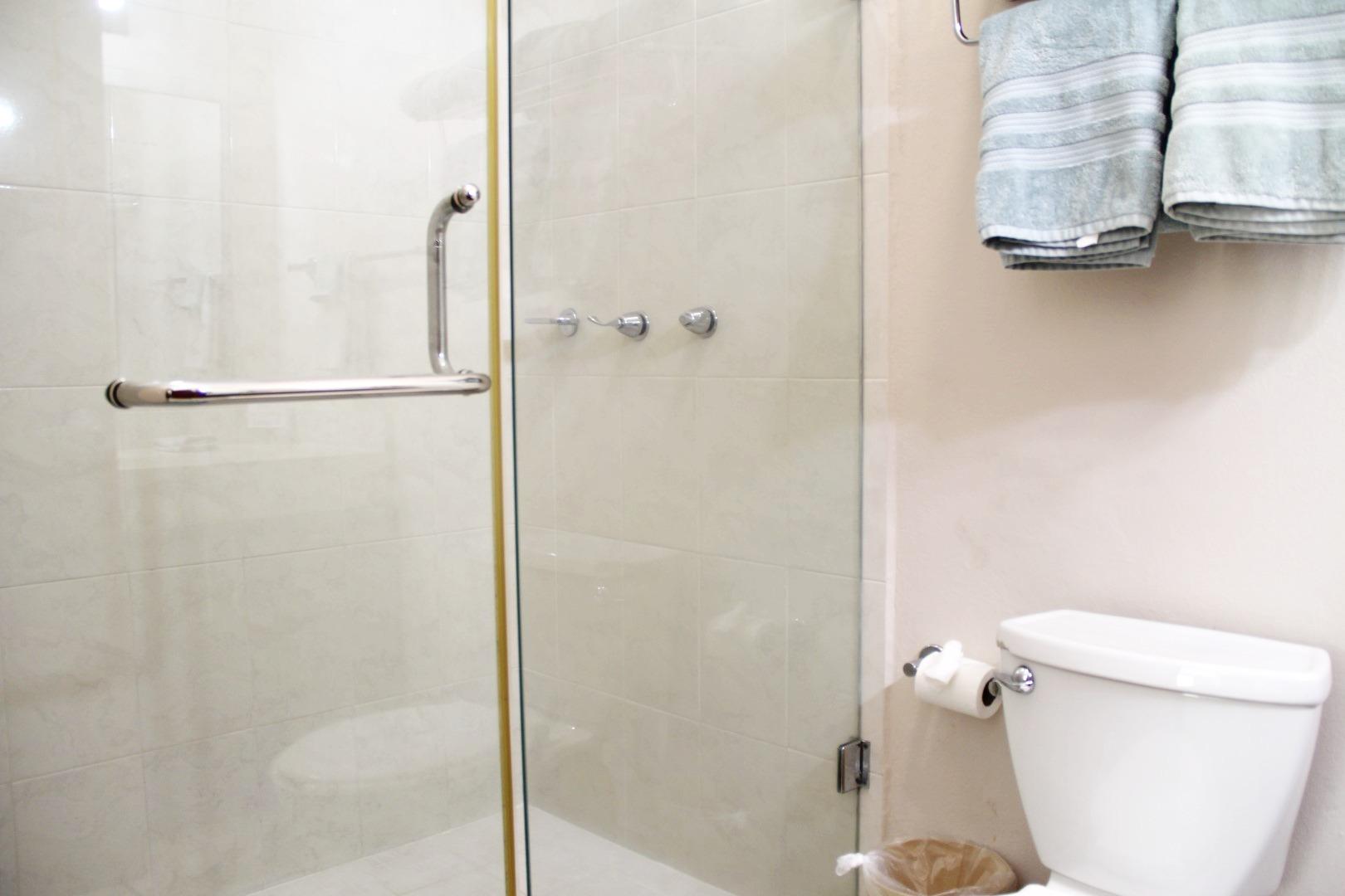 Glass-door shower in master ensuite.