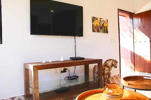 TV in apartment.