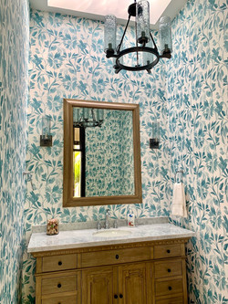 Fabulous guest bathroom.