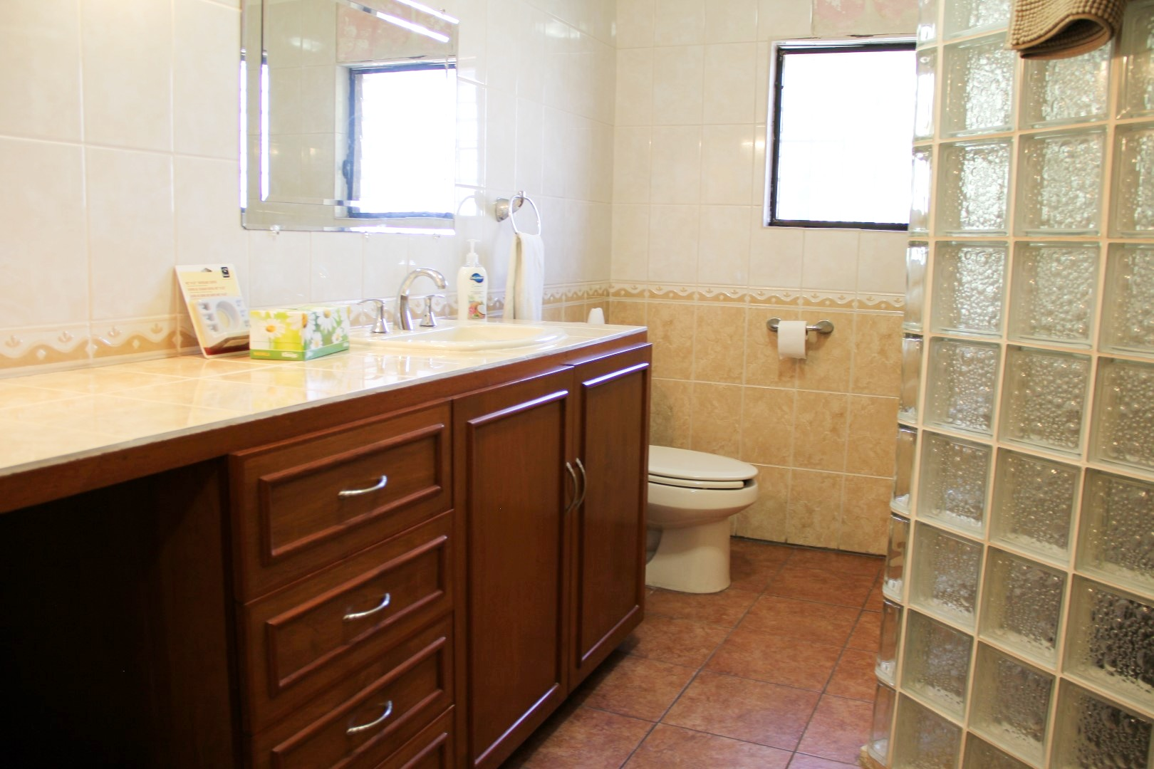 Master ensuite with shower and large vanity.