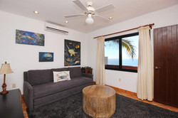 TV room with queen sofa-bed.