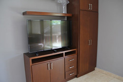 TV centre in living room
