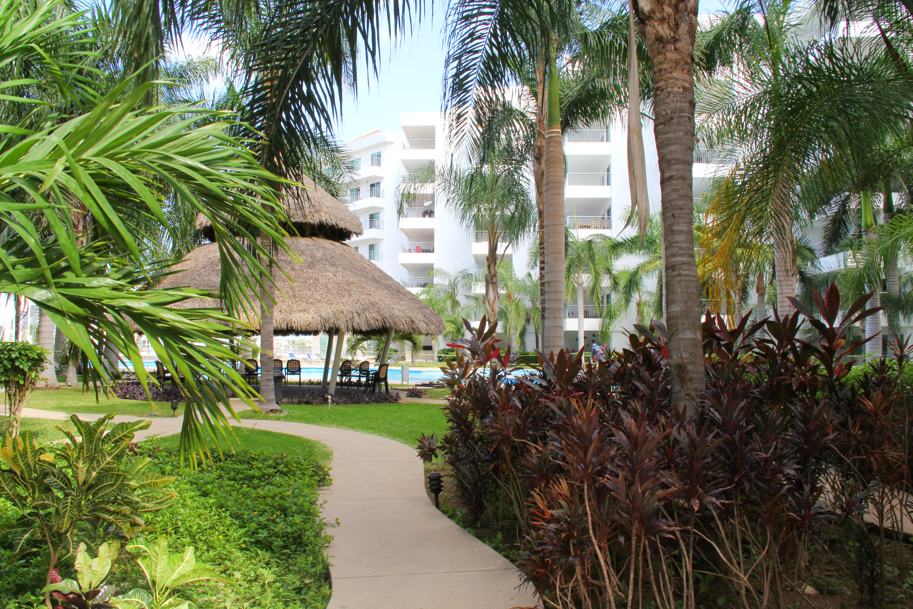 Path to pool and palapa.