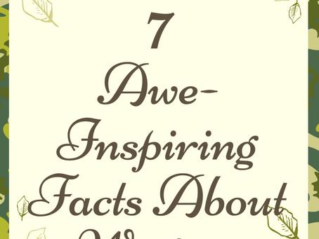 7 Awe-Inspiring Facts About Writing