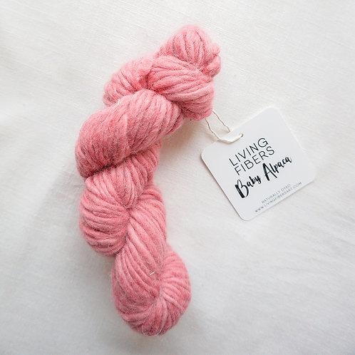 Baby Alpaca - Bright pink