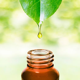 herbal scent.jpg