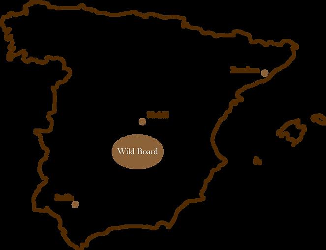 mapa wild board.png