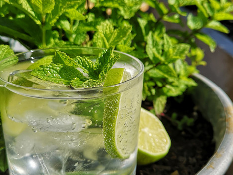 Mowing and Mojitos!