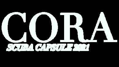 Scuba logo 1.png