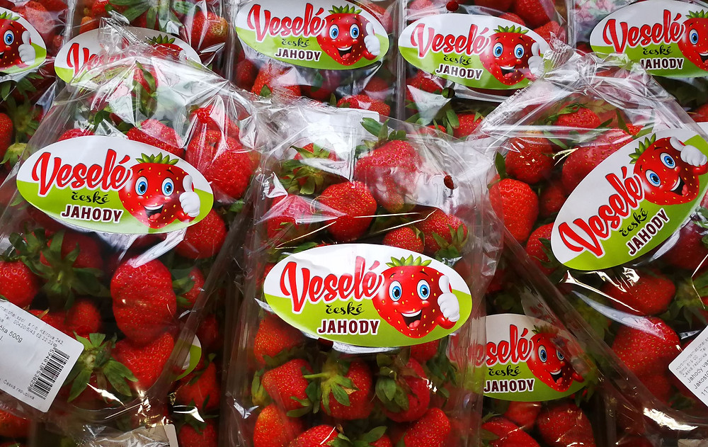 Veselé české jahody firmy Hortim-International, spol. s r.o.