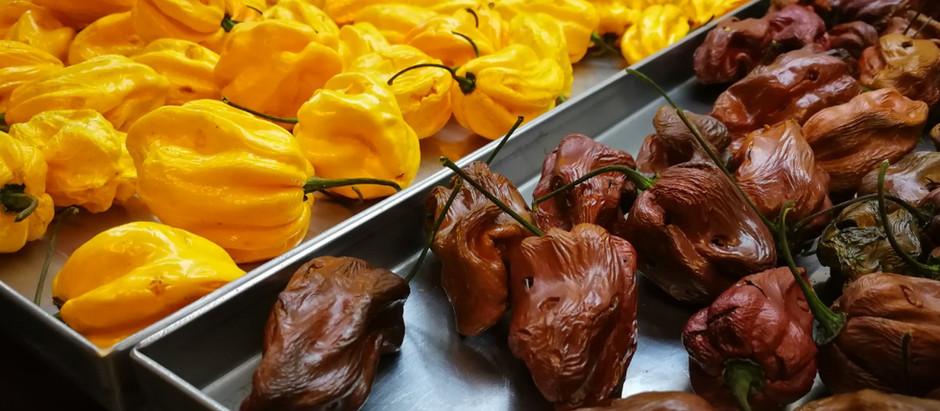 Lyofilizované chilli papričky
