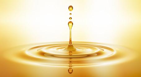 Výměna oleje ve vakuové vývěvě lyofilizátoru