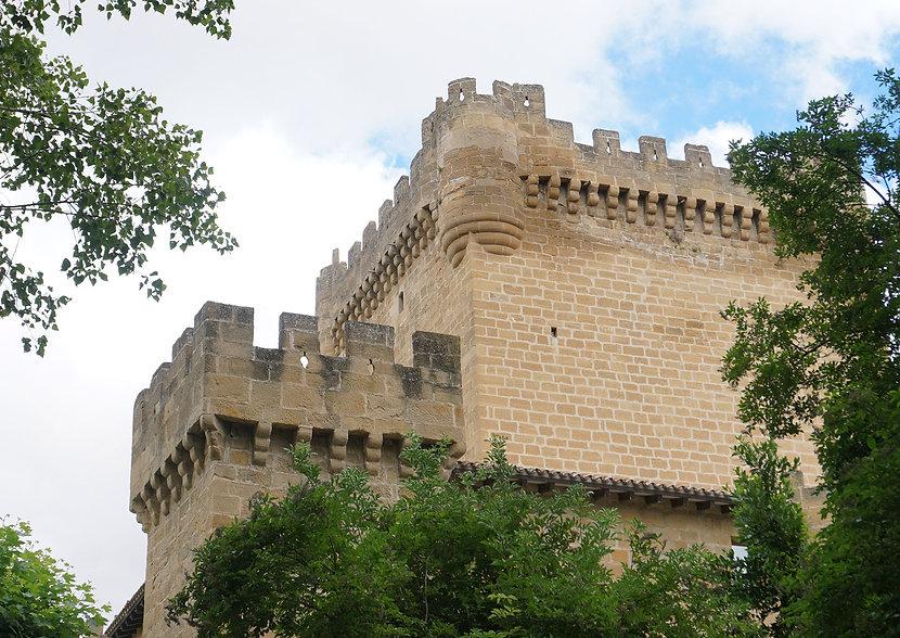 torre-castillo-DSC00352.jpg