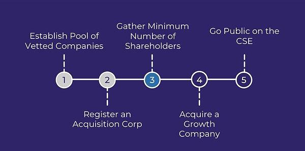 GPAI - Acquisition Corp Roadmap.jpg