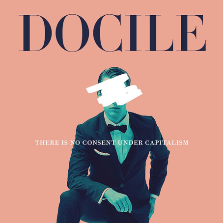 'Docile': a look into the system