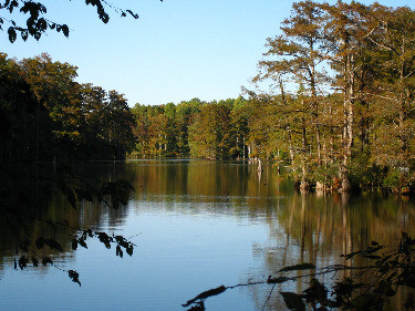 A brief history of Jolly's Mill Pond
