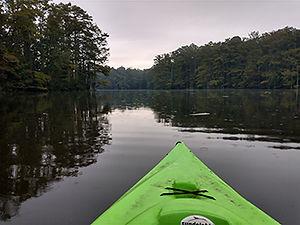 Jollys_Kayaking2_350x263px.jpg