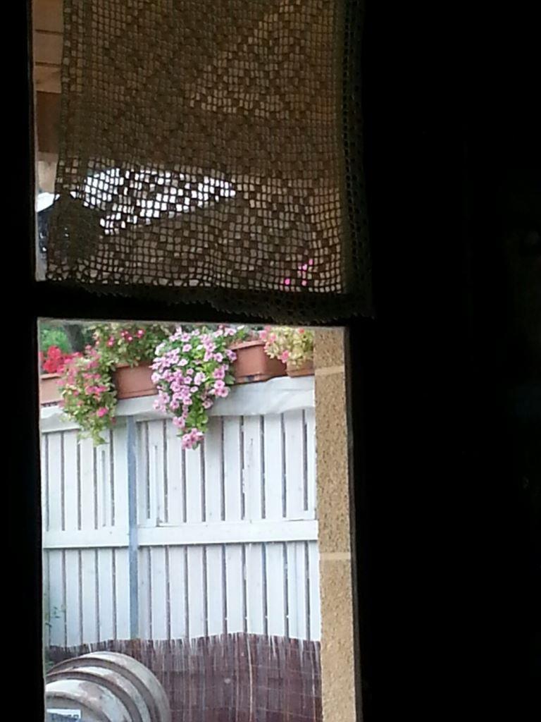 מבעד לחלון 1