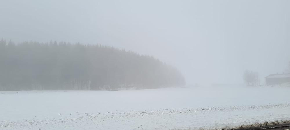 Norway winter snow