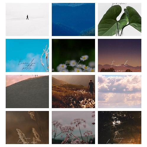 12 thèmes