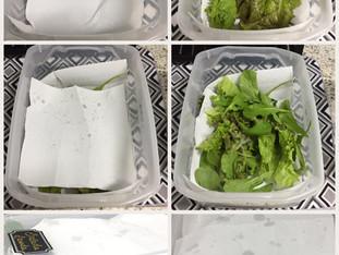 Salada fresca a semana toda!