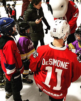 Niagara Icedogs Hockey club.jpg