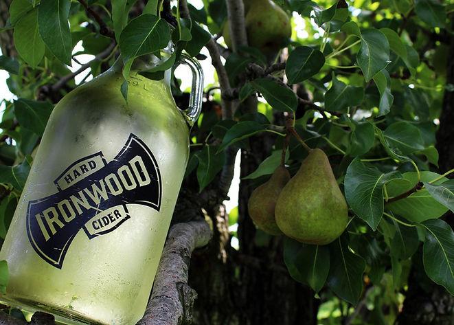 Cider-in-Niagara-ironwoodcider-UGC.jpg