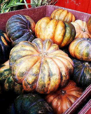 Harvest Barn1.jpg