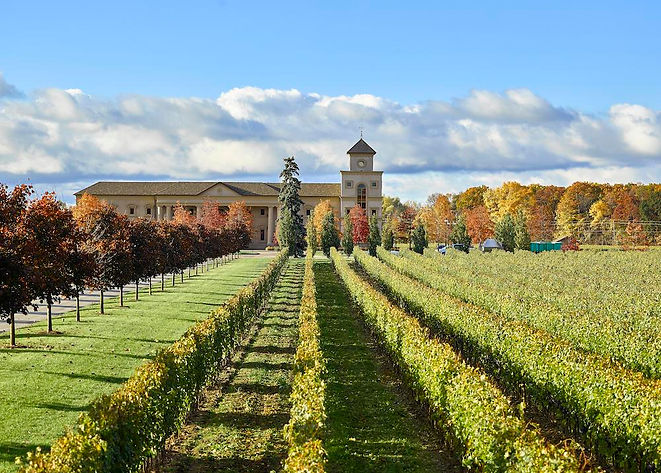Twi-Sisters-Vineyard-in-Niagara (1).jpg