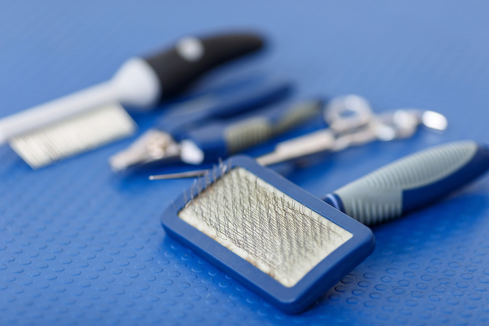 Your Groomer will be happy to share proper brushing and combing techniques specifically for your pet with you.