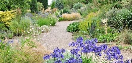 Jardin ecololo sec.jpg