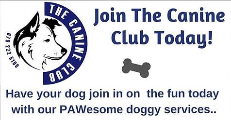 The Canine Club14.jpg