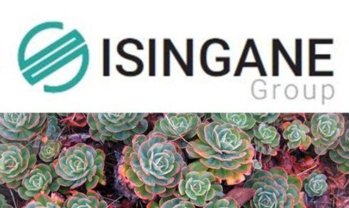 Isingane group2.jpg