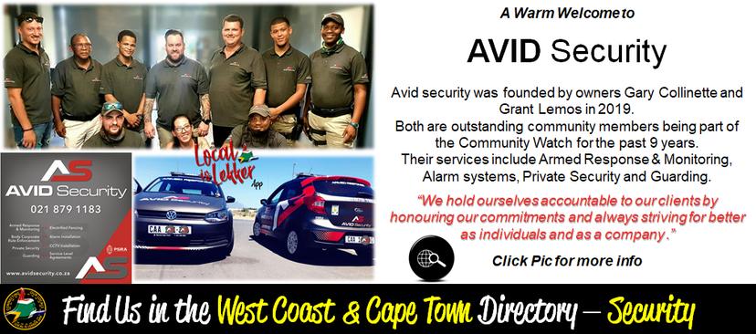 Avid Security