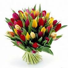 Цветы в Ишимбае с доставкой