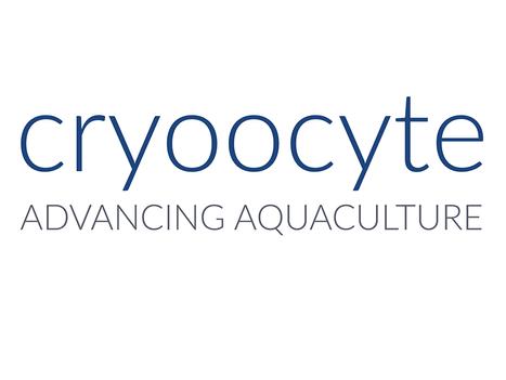 Cryoocyte