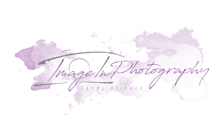 ImageIn Photography Logo