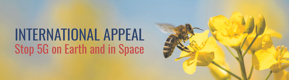 5gintspace appeal.jpg
