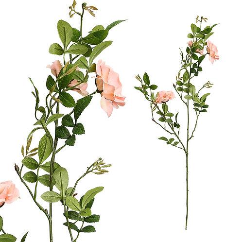 Flor Rosa Selvagem