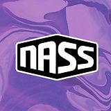 nass_festival_2019.jpg