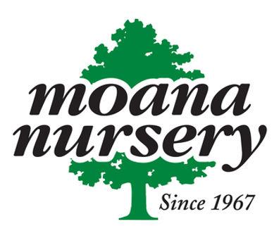 MoanaNurseryLogo.jpg