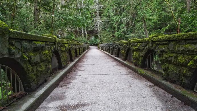 Surrender the Bridge