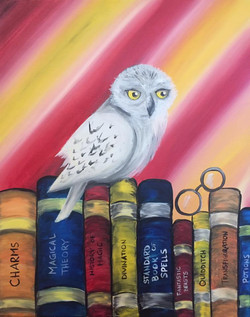 Hedwig & the Books