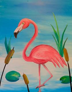 Little Flamingo