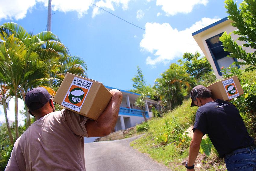 _Impacto_Puerto Rico_Alimentos_Comerío.JPG