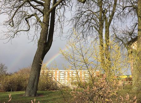 Encuentra tu propio arcoiris