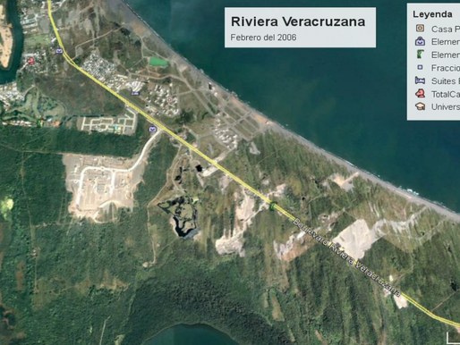 ¿Por que es atropellada la fauna🌴🌳🌲🌵 en la Riviera Veracruzana?