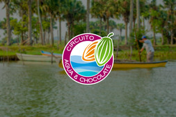 Logo Agua y Chocolate