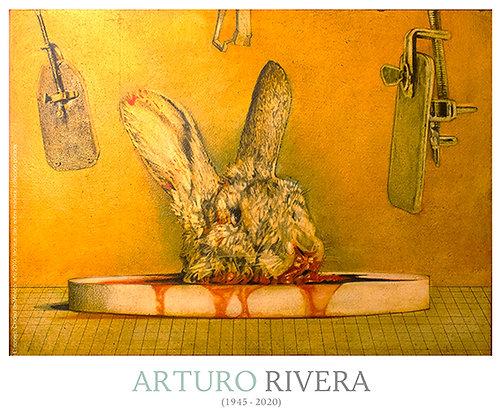 Poster - El conejo