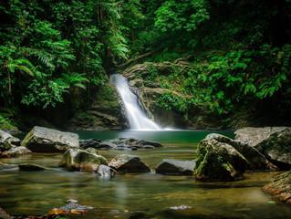 Top 5 Waterfalls in Trinidad and Tobago